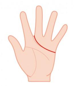 人差し指と中指の間に入る感情線