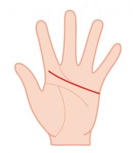 人差し指の下まで伸びる感情線